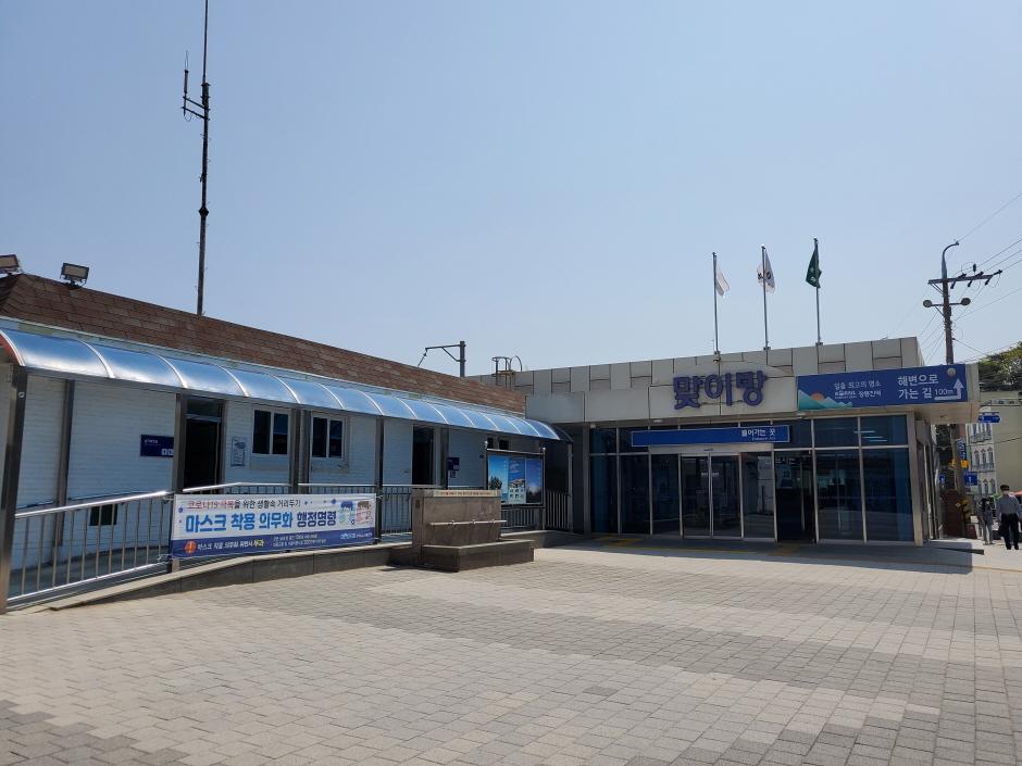 Estación de Jeongdongjin (정동진역)3