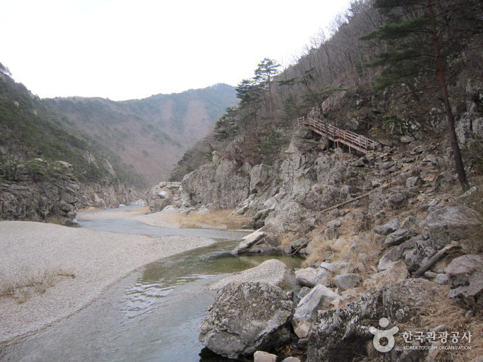 Wangpicheon Valley (왕피천계곡)