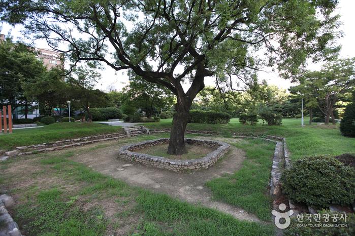 Парк Вонсо (원서공원)4