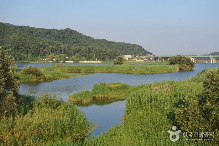Hwangnyonggang River (황룡강)