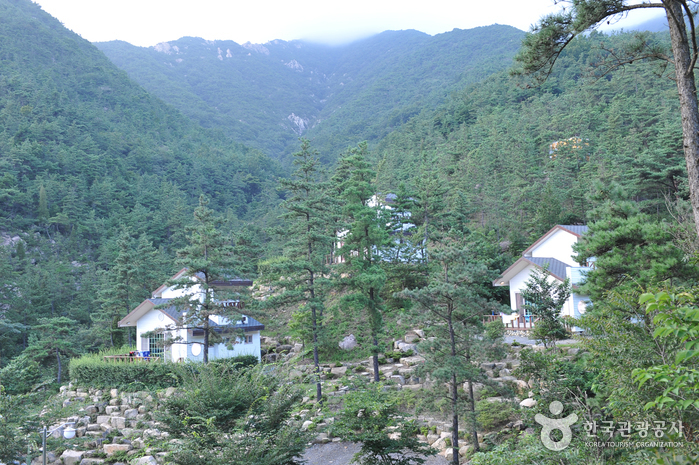 国立楽安民俗自然休養林(국립 낙안민속자연휴양림)