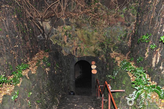 Ssangyonggul Cave (Hallim Park) (쌍용굴-한림공원)