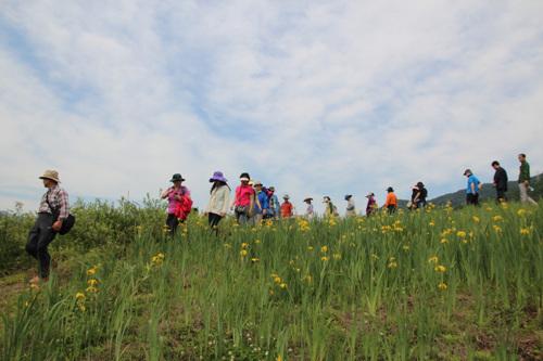 가평삼회 생태복원지구 사진5