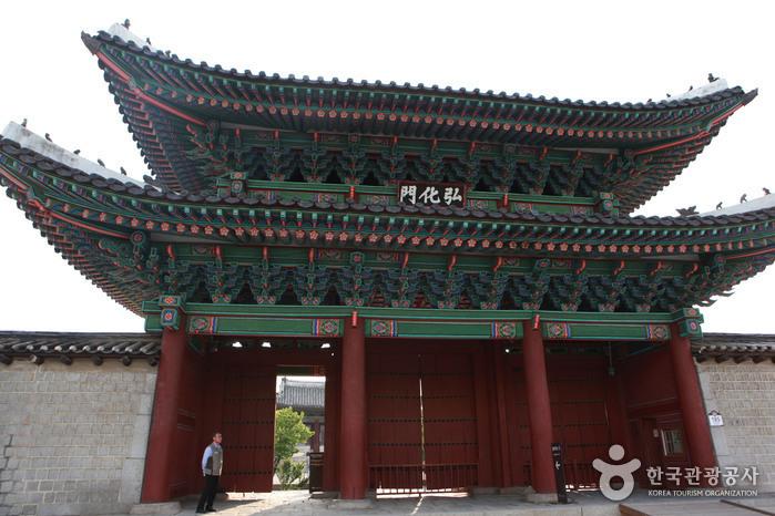 창경궁 정문 홍화문