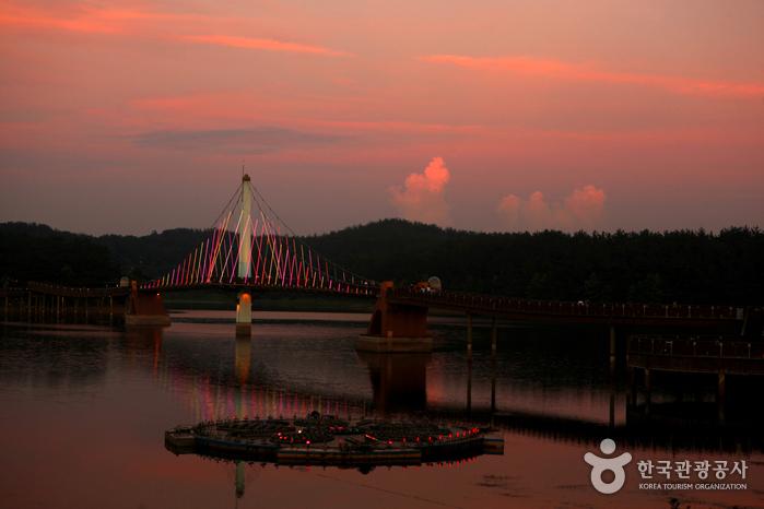 호수의 도시 군산에 빛이 내린다.