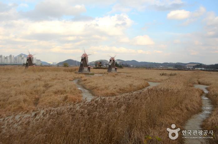 Sorae Ecology Park (소래습지생태공원)