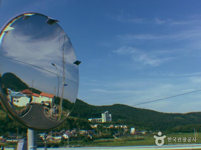 필름카메라로 찍은 물건마을