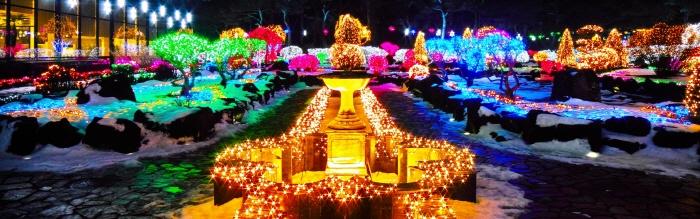 벽초지수목원빛축제-거울나라의 빛축제 2019 사진2
