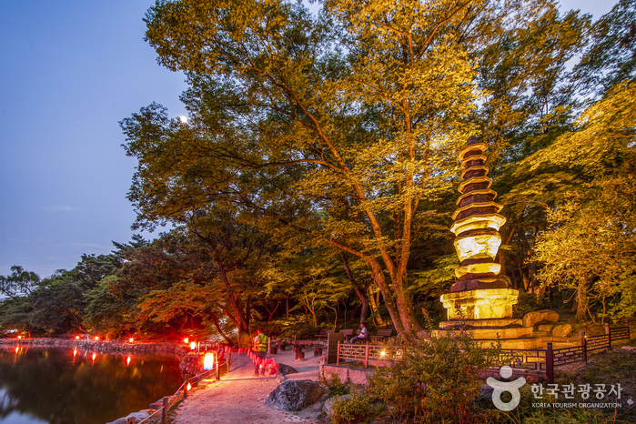Дворец Чхангёнгун (창경궁)5