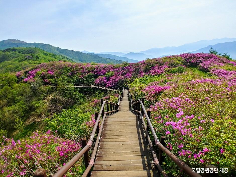 智異山國立公園(南原)(지리산국립공원(남원))