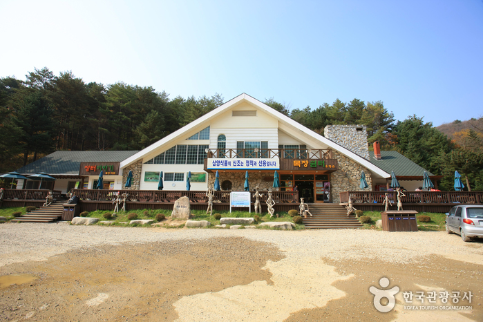 Eco Green Campus [Daegwallyeong Samyang Ranch] ( ,   )