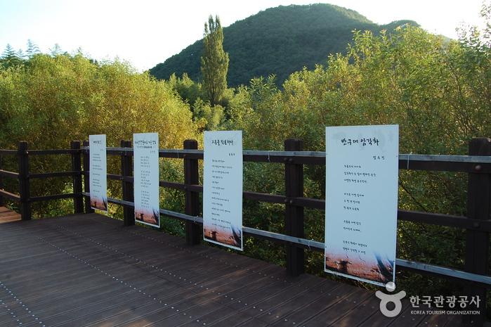 Bangudae-Felszeichnungen (울산 대곡리 반구대 암각화)