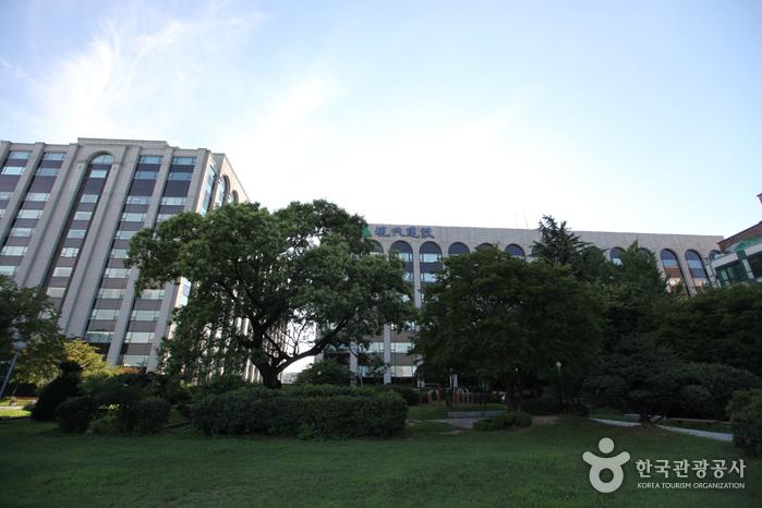 Парк Вонсо (원서공원)3