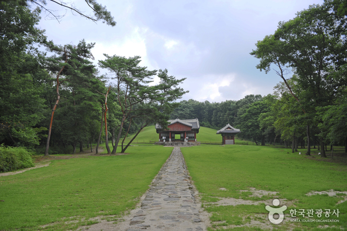 Paju Three Royal Tombs [UNESCO World Heritage] (파주 삼릉 [유네스코 세계문화유산])