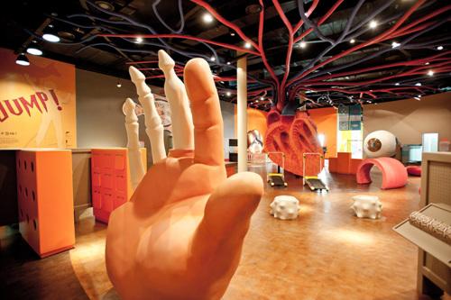Детский музей провинции Кёнги-до (경기도어린이박물관)10