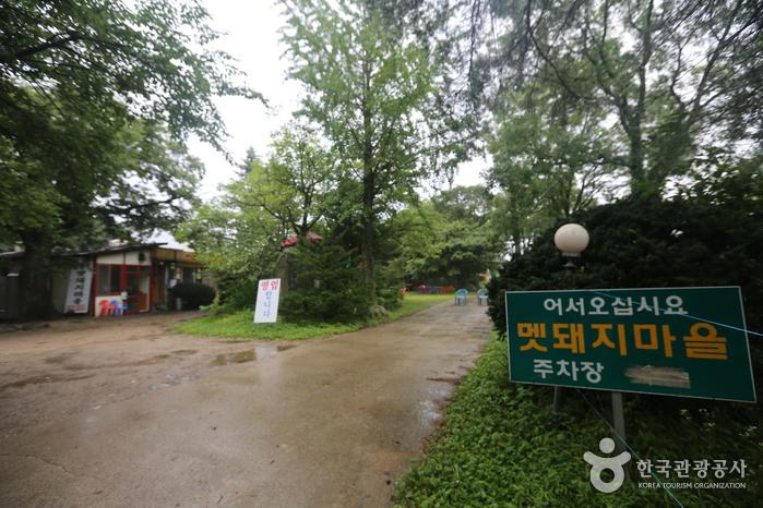 김철우멧돼지마을