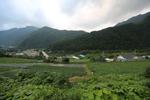 홍천 살둔마을