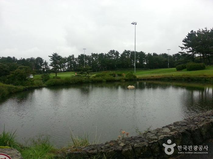 Jeju Country Club (제주컨트리클럽)