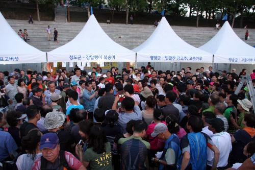 내고장 사랑 대축제 2017  사진3