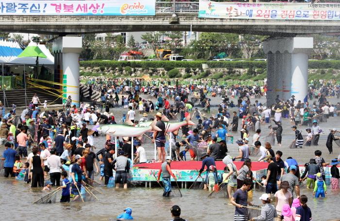 Bonghwa Euneo (Süßfisch) Festival (봉화은어축제)