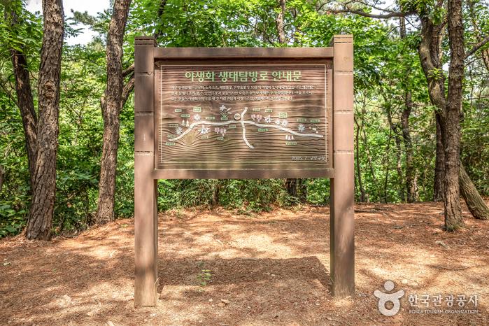 온수도시 자연공원(잣절공원)