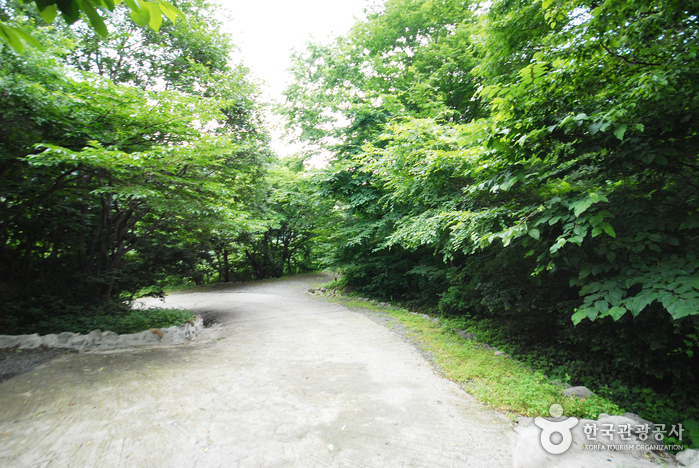 Ganwolsan Mountain (간월산)