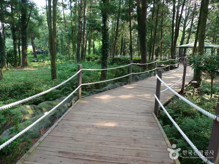 김녕미로공원