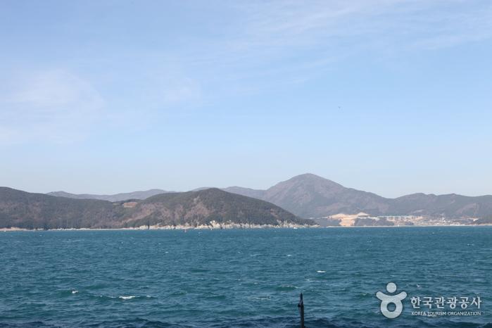 只心島(지심도)