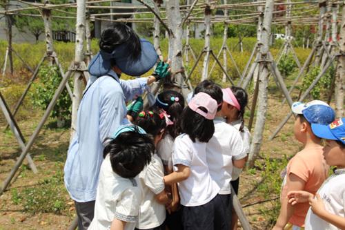 가평삼회 생태복원지구 사진8
