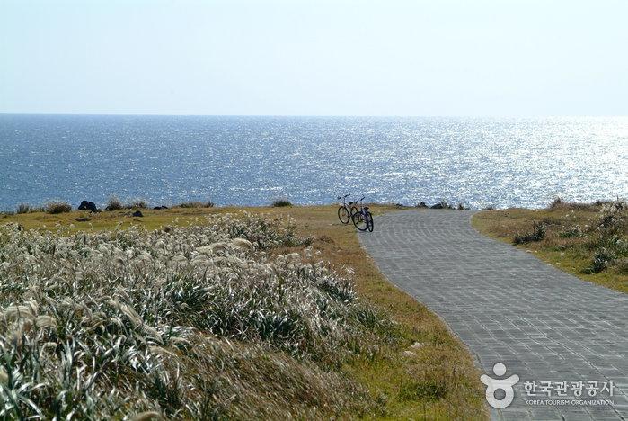 Mara Ocean Park (마라도(마라해양도립공원))