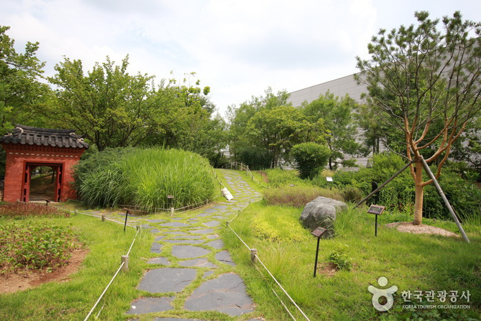 전통염료식물원