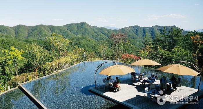 산꼭대기 예술 정원, 뮤지엄 산 <9월의 힐링콘서트>