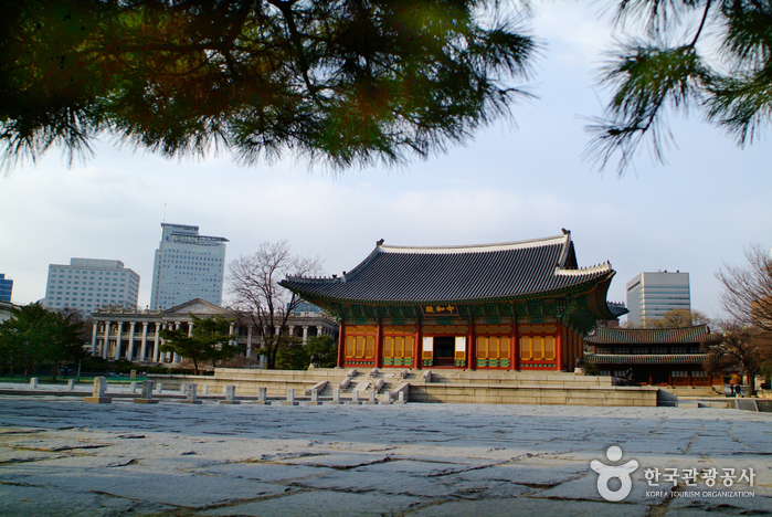 Seoul City Tour (서울시티투어)