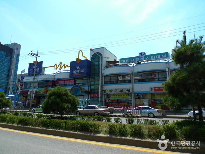 泰安共用バスターミナル(태안공용버스터미널)