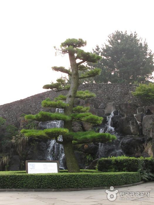 생각하는 정원