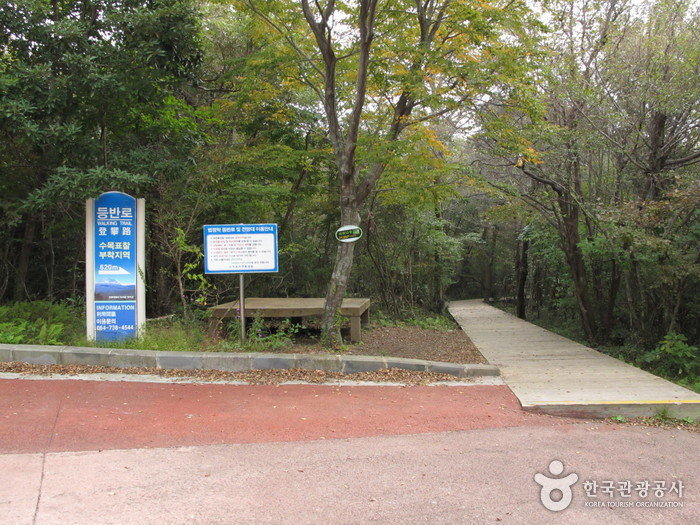 Seogwipo Natural Recreation Forest (서귀포자연휴양림)