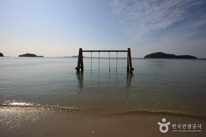 Пляж Сонхо (송호해수욕장)13