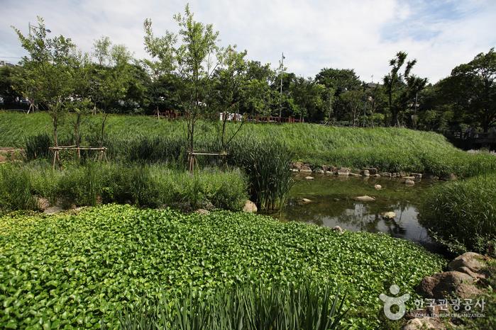 Парк Чанчхундан (장충단공원)6