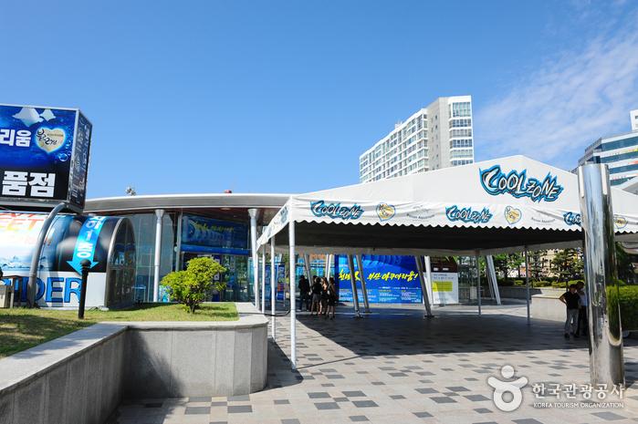 Busan Aquarium (부산아쿠아리움)