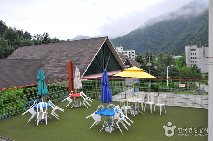 Gapyeong Sledding Hills (가평사계절썰매장)