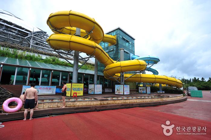 Аквапарк Water World на Чечжудо (제주워터월드)