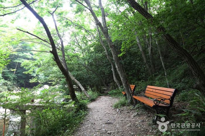 두륜산도립공원