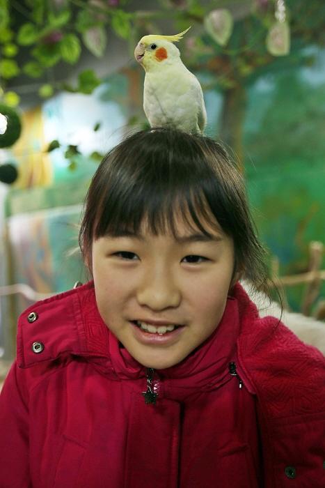 앵무새의 재롱이 귀여운 미니멀동물원