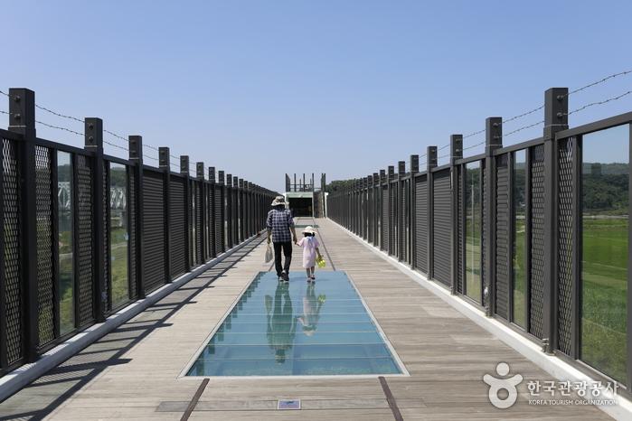 독개다리 스카이워크를 걷는 여행객