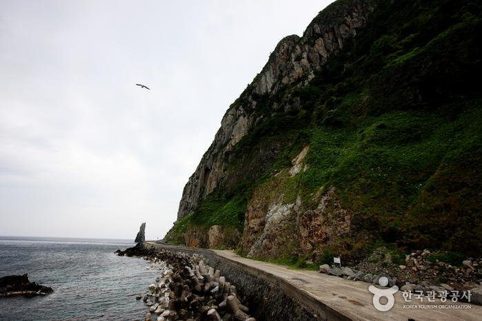 Ulleungdo Island (울릉...