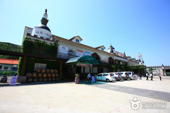 Wine Korea (영동 와인코리아)