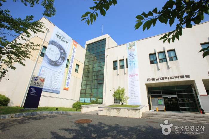 충남대학교박물관