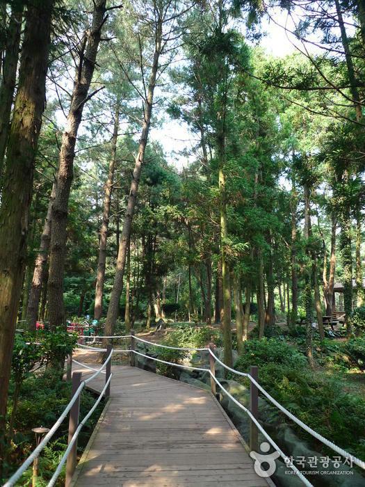 Gimnyeong Maze Park (김녕미로공원)