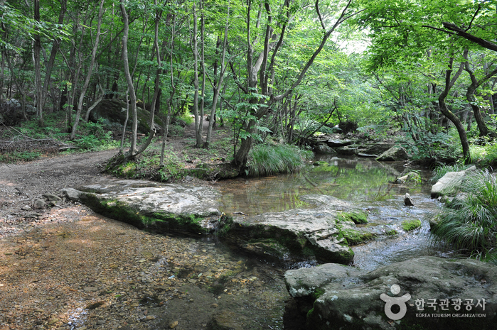 Seonunsan Dosol Valley ( )