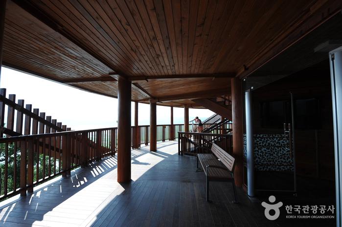 Обзорная площадка Ёнсан у залива Сунчхонман (순천만 용산전망대(S자 물길))6